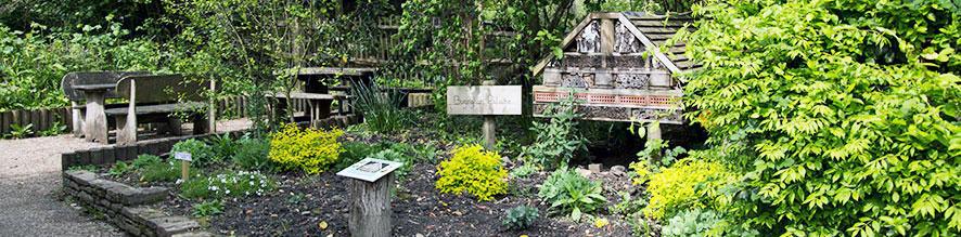 Visitor-Centre-Garden